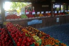 1_Janice_Smith_Produce-Stand_Knightsen.jpg-5fd103f789e45