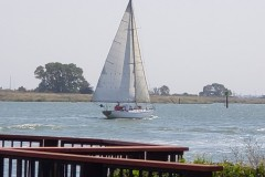 1_Trish-Dominguez_Sailboat-on-Delta_Pittsburg-5dcdab331d5e9